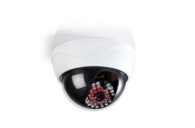 Dôme caméra de sécurité factice
