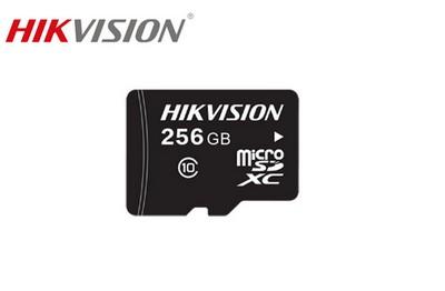 Carte 256GB Micro SD
